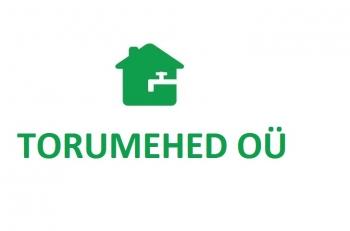 roheline ilma raamita - majaga kirjaga