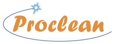 proclean_teenus.info