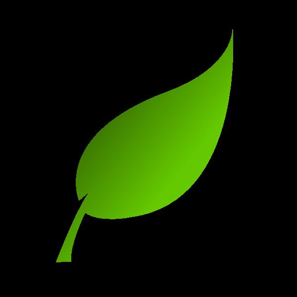 logo_hekitaimed