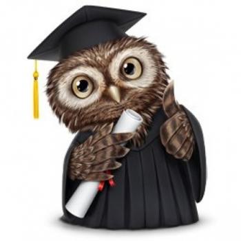 Referaatide, kursusetööde, lõputööde toimetamine/koostamine