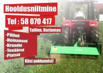 Heina niitmine / hooldusniitmine