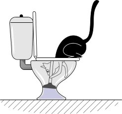 cat_and_wc_07